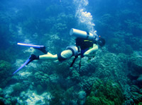 north cyprus diving